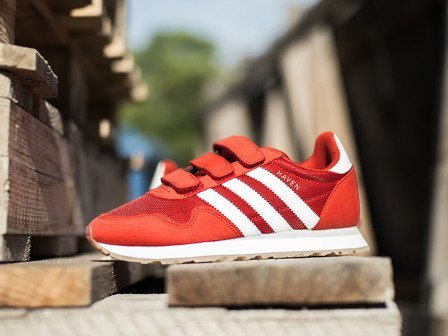 "Buty dziecięce sneakersy adidas Originals Haven ""Red"" BY9484"