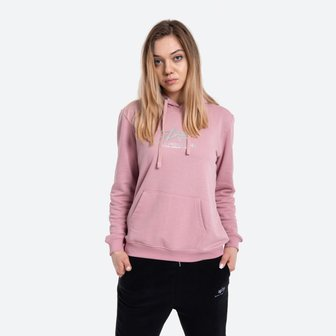 Bluza damska Alpha Industries New Basic Hoody Wmn Foil Print 196032FP 531